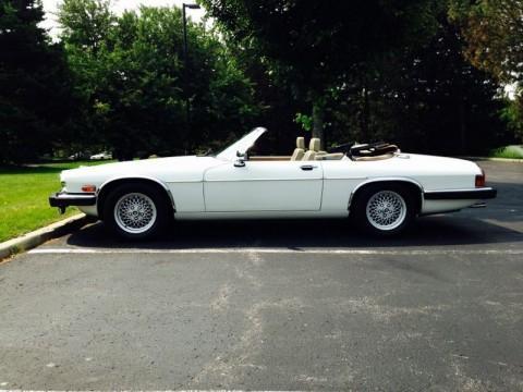 1991 Jaguar XJS Collectors Edition for sale
