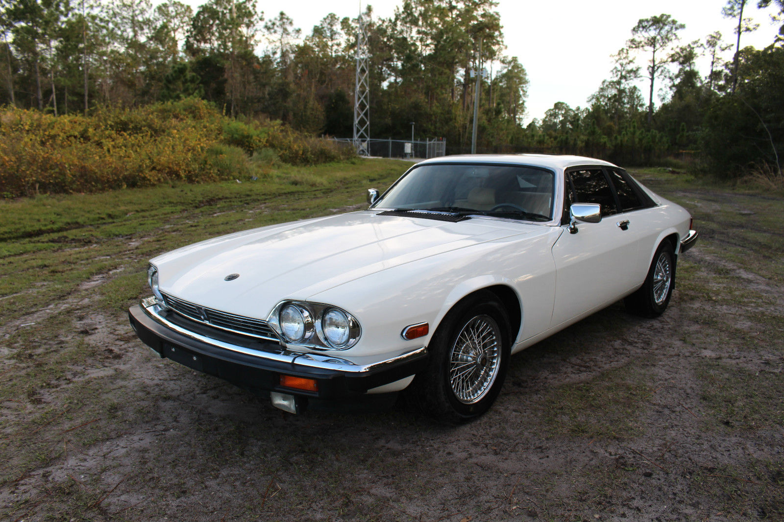 1983 jaguar xjs he coupe v12 for sale. Black Bedroom Furniture Sets. Home Design Ideas