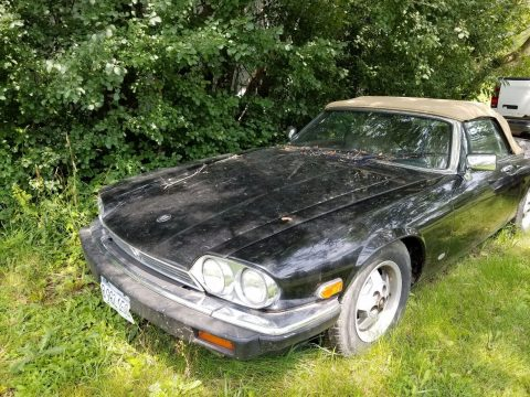 1987 Jaguar XJS Hess & Eisenhardt V12 Convertible for sale